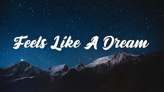 AWAKEND & Herrin - Feels Like A Dream (Lyrics) ft. Luma