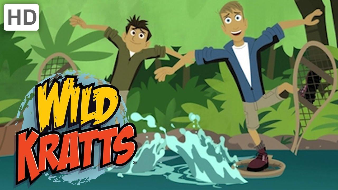Wild kratts animals make a splash 💦 kids videos youtube