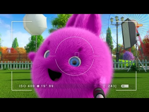 Sunny Bunnies | Big Boo and the Selfie Stick | COMPILATION | Cartoons for Children