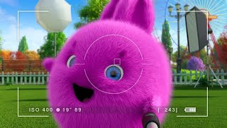 Sunny Bunnies | Big Boo and the Selfie Stick | COMPILATION | Videos For Kids