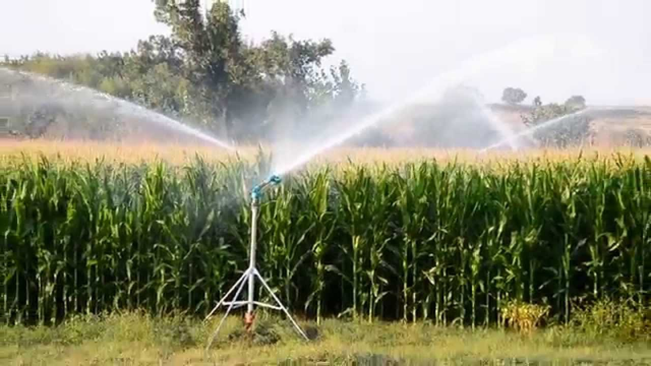 Ducar Jet35 Corn Irrigation 2 Youtube