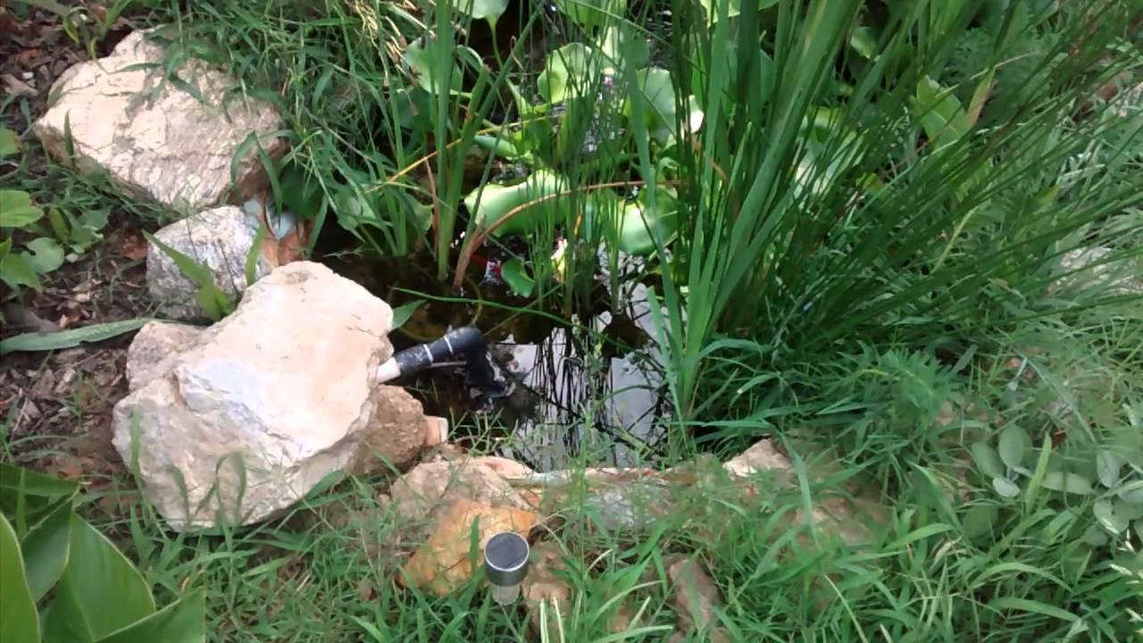 Diy koi pond filter water garden bog filter youtube for Koi pond bog filter