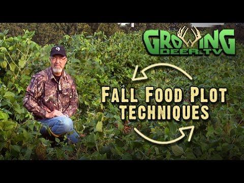 Food Plot Strategies To Get Better Soil and Bigger Antlers (#303) @GrowingDeer.tv