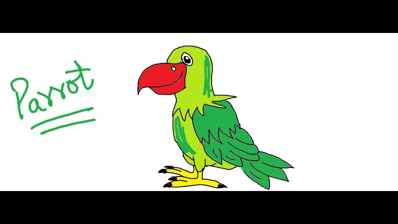 how to draw a parrot in quick draw