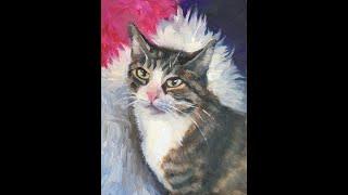 Oil Painting of Cat - Time Lapse - Alla Prima Colour
