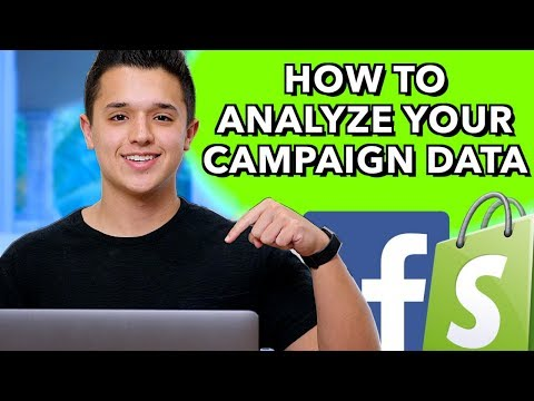How To Analyze Your Campaign Data  - Facebook Ads in 2019 for Dropshipping thumbnail