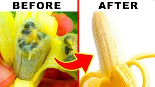 Weird Facts About Bananas