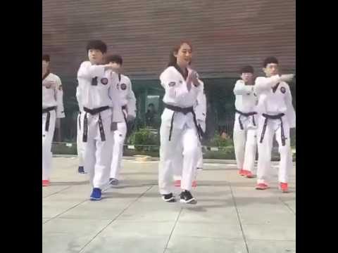 The Martial art Dance
