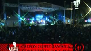 calton coffie - CONVIVENCIA ROCK 2012 - PEREIRA RISARALDA
