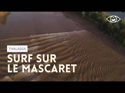 Surf sur le mascaret (reportage complet) - Thalassa