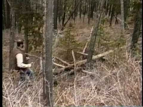 Matthew Fox - Survival of the Yellowstone Wolves 19961103 (Part 2)