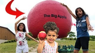 Kids Pretend Play with Giant Apple and Learn colors!!