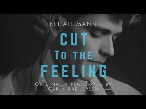 Carly Rae Jepsen - CUT TO THE FEELING (Elijah Mann Cover)