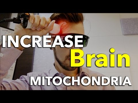 LLLT: Using Light Cure on My Head - Increase Brain Mitochondria