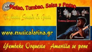 """""""Amarilla Se Pone"""" - Yembeke Orquesta"""