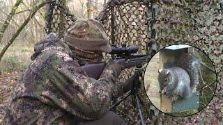 The Airgun Show – Mega winter squirrel shoot, PLUS the Brocock Commander on test