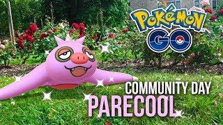 PARECOOL SHINY durant le COMMUNITY DAY PARECOOL sur POKÉMON GO