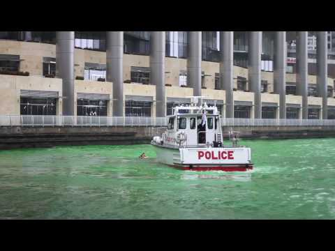 Two Guys Swim in Chicago River