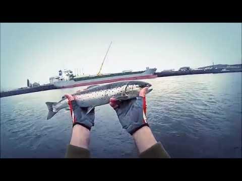 Seatrout Fishing - Urban Adventure