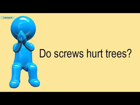 Do Screws Hurt Trees?
