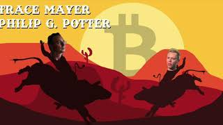 Trace Mayer chats with Whalepool on bitcoin, segwit, 2x, fundmental analysis