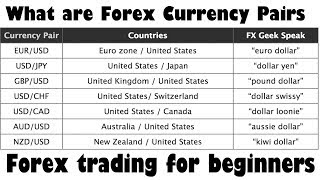 What are Forex Currency Pairs & the Basics of Forex Trading |Hindi-Urdu Video