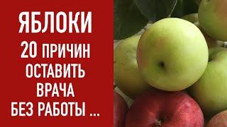 ЯБЛОКИ -ОСТАВЬ ВРАЧА БЕЗ РАБОТЫ!!!