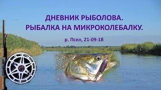Дневник рыболова  Рыбалка на колебалку  Псел 21 09 18