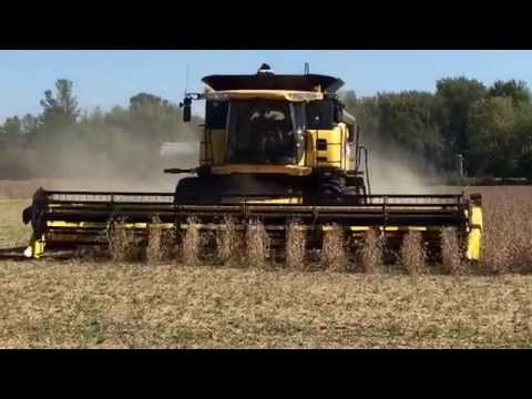 Farm boy reef New Holland Combine Harvester  Time to harvest Nash Creek Farms