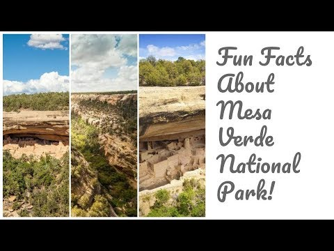 Fun Facts About Mesa Verde National Park!