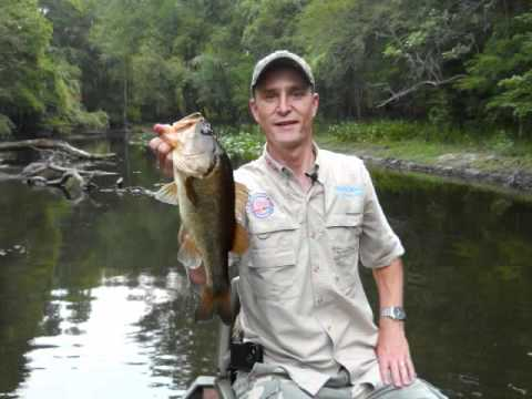 America 39 s family outdoors hillsborough river fishing for Hillsborough river fishing