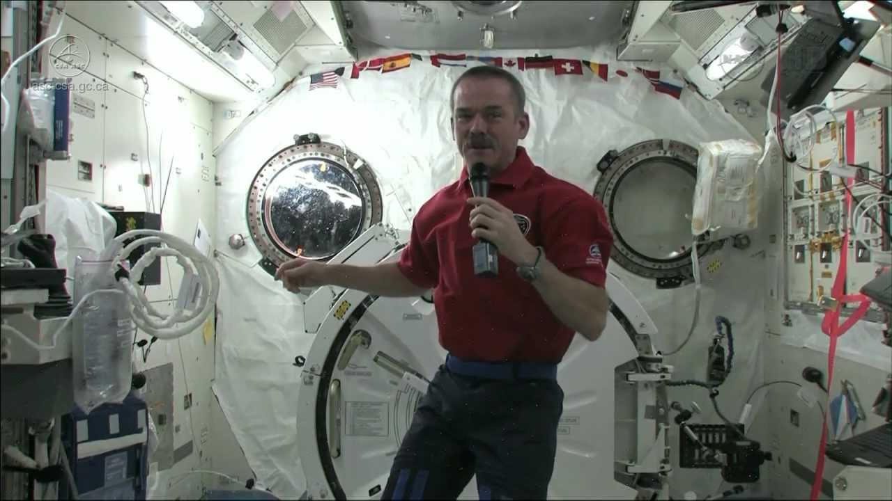 Does chris hadfield have siblings