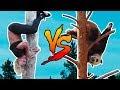 DUDESONS VS PANDA: BUTT-FIRST TREE CLIMB
