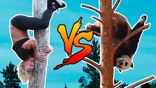 DUDESONS VS PANDA: BUTT-FIRST TREE CLIMB