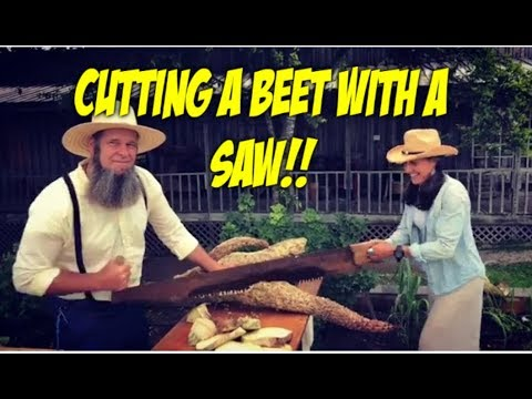 BEETS are a GARDEN SUPER FOOD! easy to grow and harvest