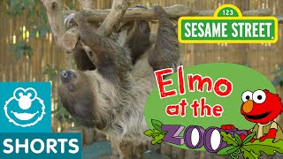 Sesame Street: Watch These Baby Animals Move! (Elmo At The Zoo #7)