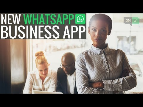 WhatsApp's Free Business App, New Adwords Experience, YouTube Update - DMW #45