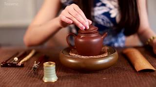 Yunnan Pu Erh Tea Cake - Steeping Authentic Puer Tea by Teasenz