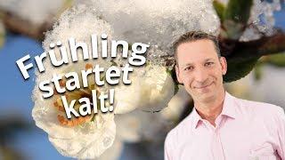 Kai Zorn erklärt: Frühling 2019 wird Kaltstart hinlegen