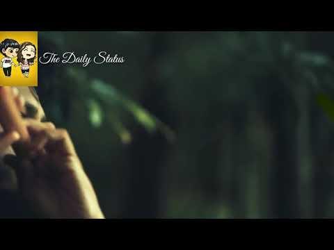 Kal ho na ho - Flute version - Whatsapp sad status video song - Varun Kumar flute