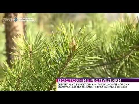 интим знакомства Троицко-Печорск