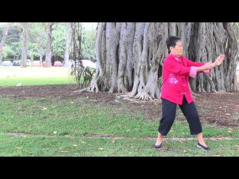 Tai Chi Under Banyan Tree at Waikiki everydaytaichi lucy chun Honolulu, Hawaii