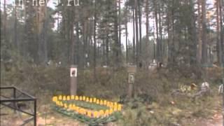 Кладбище домашних животных (ВЦС от 18.02.14)