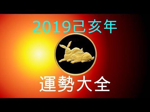 2019年己亥年運勢大合集:肖兔者