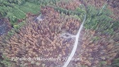 Pyhärannan metsäpaloalue 2018