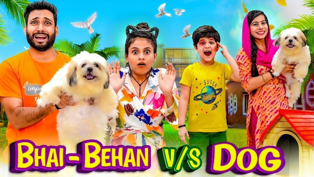 Bhai Behan vs Dog | BakLol Video