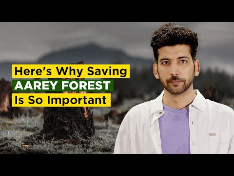 Here's Why Saving Aarey Forest Is So Important   Indiatimes Mp3