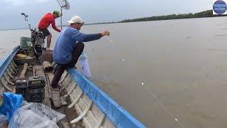 Ra biển giăng lưới bắt được nhiều thứ cá/fishing