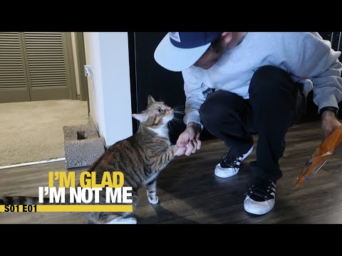 Can your cat shake hands?  Chris Roberts Im Glad Im Not Me #001