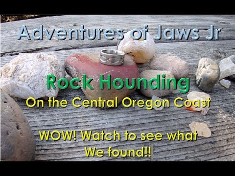 Rock Hounding On The Central Oregon Coast (looking For Agates And Jasper)